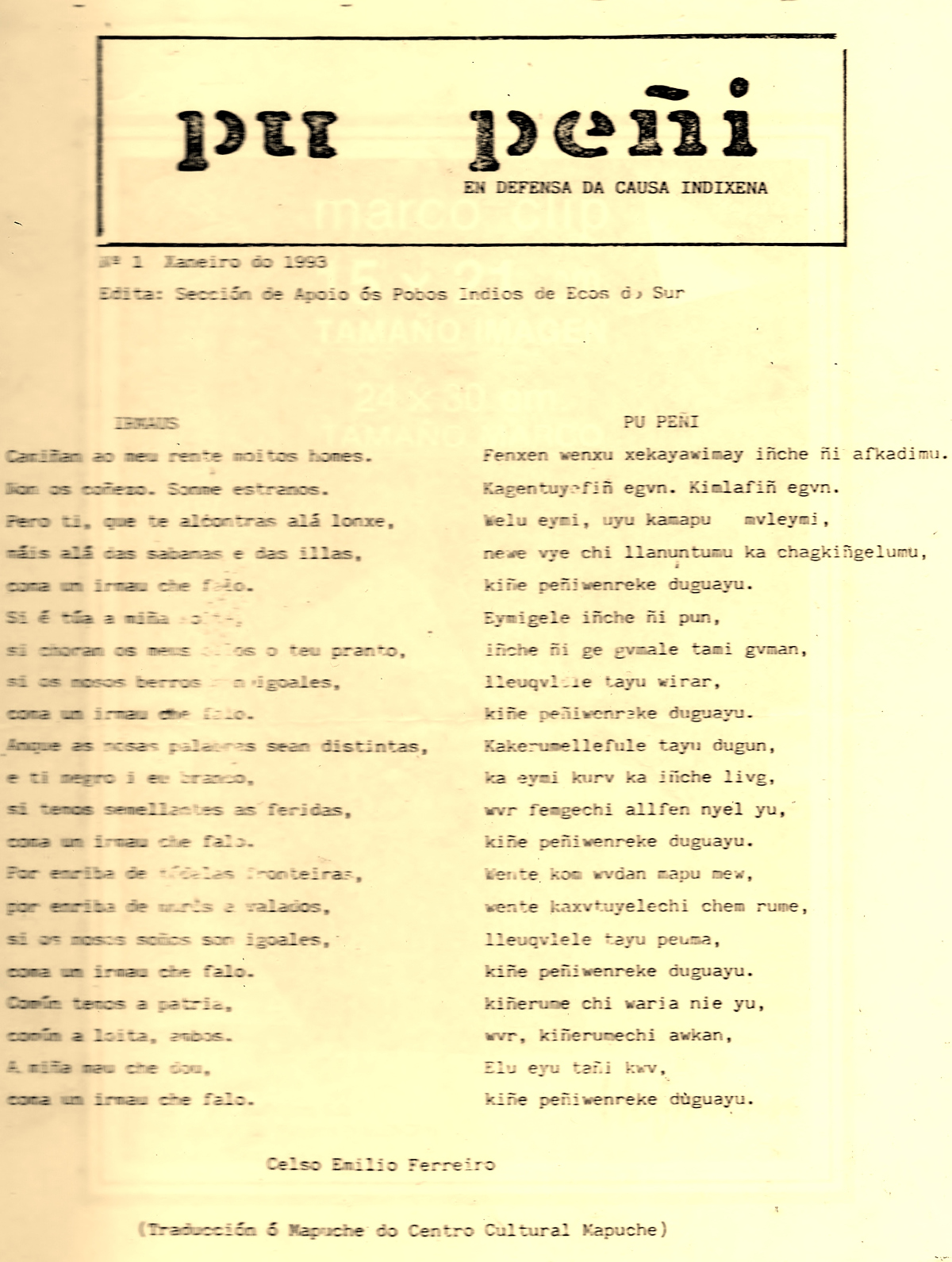 poema-irmaus-en-galego-e-mapuche1